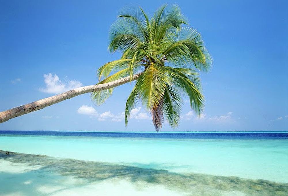 Islas privadas 2