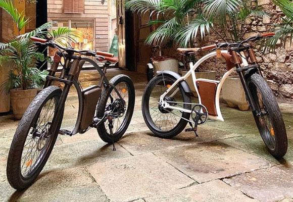 rayvolt bike modelo torino