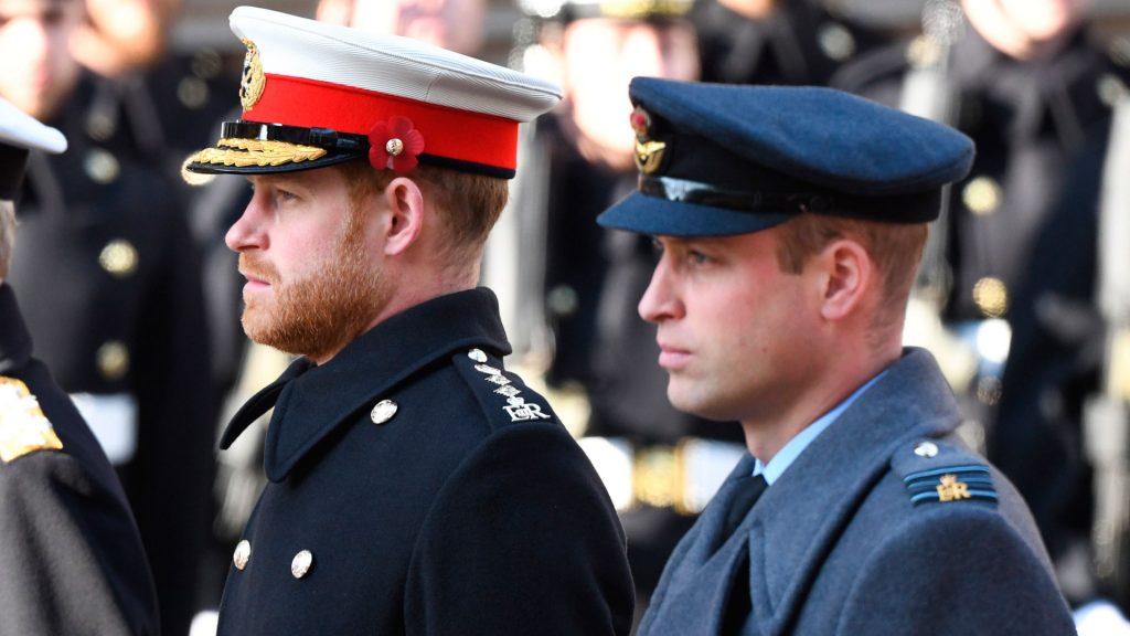 principes William y Harry