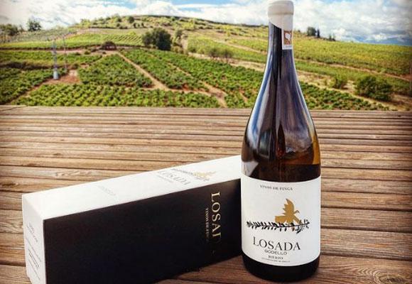 Losada godello vino