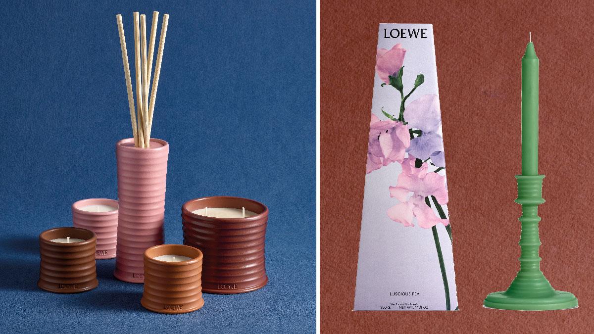loewe perfumes hogar 2