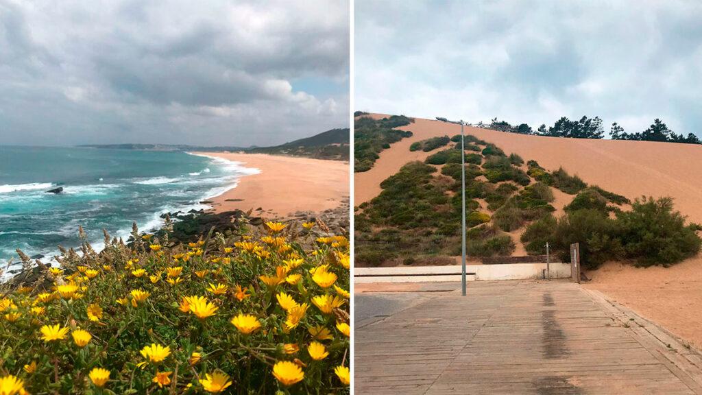 Praia do salgado y duna