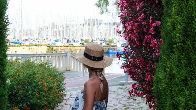 palma puerto